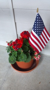 Red flowers by the front door = good Feng Shui. The flag makes it better.