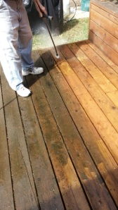 My sister wanted to play too. Pressure washing the deck before re-staining it. The dark is slimy when wet.