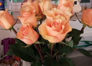 Roses, like good friends are treasures.