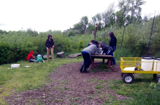 Lots of young people learning about our nature preserves too.