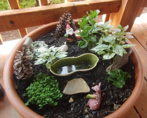 For Alys. My fairy garden lives