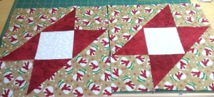 Added to a dozen more for a raffle quilt this Christmas