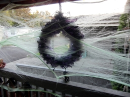 This spider webbing kept the wreath from blowing away and trapped lots of bug too. Ick!