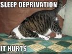 sleep-deprivation 800
