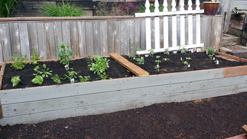 Made from the wood of the old deck. Nothing going to waste. Shoveled 2 1/2 yards of good soil but didn't need it all.