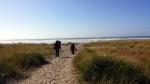 beach-hike-to