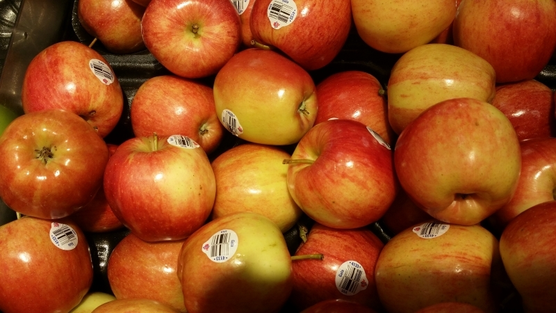 The sweet Gala apples