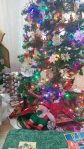 gnome under tree