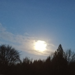 Solstice moon. I had to go out and enjoy it.