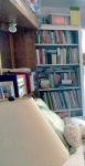 Books in thebedroom