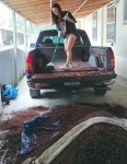 cleaning out the truck'